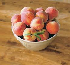 peaches for newsletter